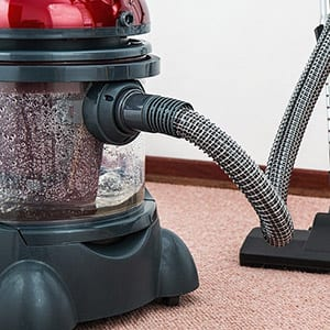 dog hair remove carpet vacuum