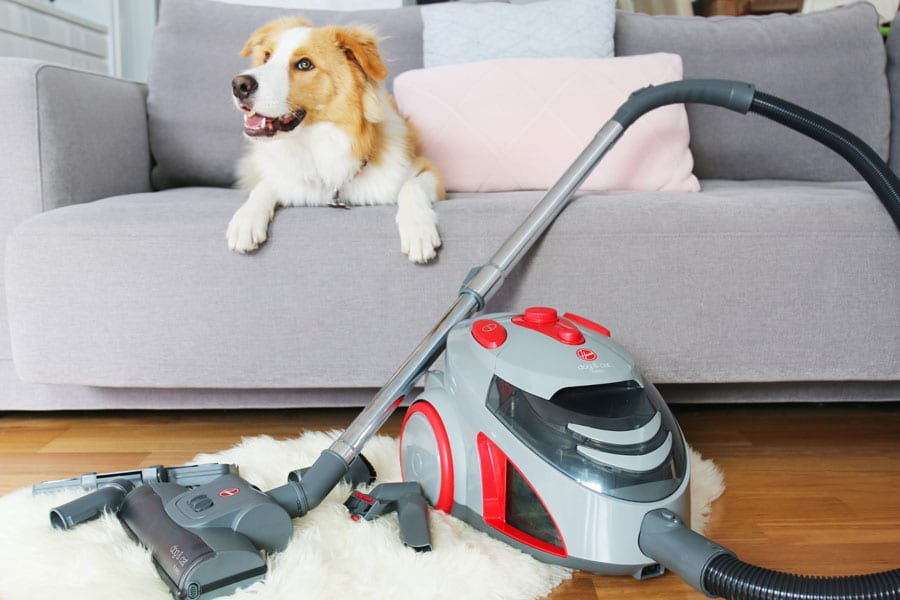 stop pet hair clogging vacuum