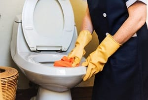 cleaning toilet needs good tools