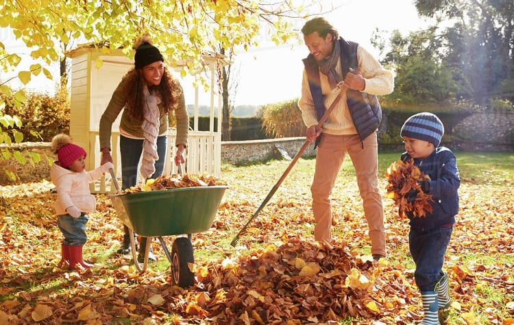 family cleaning autumn leaves
