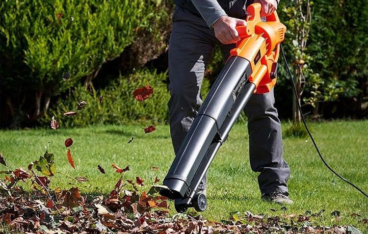 cleaning autumn leaves with leaf blower