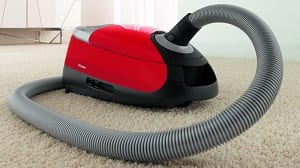 miele c2 cat dog has a large hose