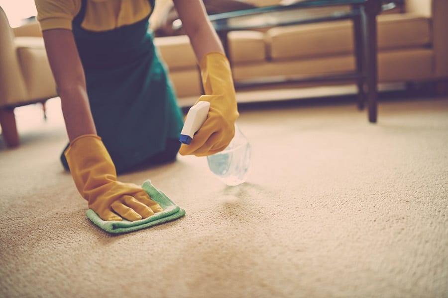 How To Clean Sick Out Of Carpet
