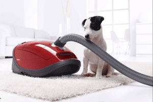Miele Complete C3 Cat And Dog Powerline Vacuum - UK Review